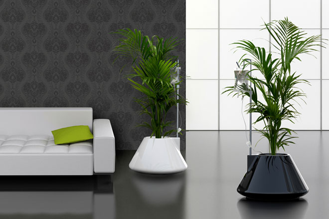 Living room decoration flower pots ideas 4