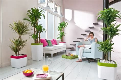 Living room decoration flower pots ideas 5