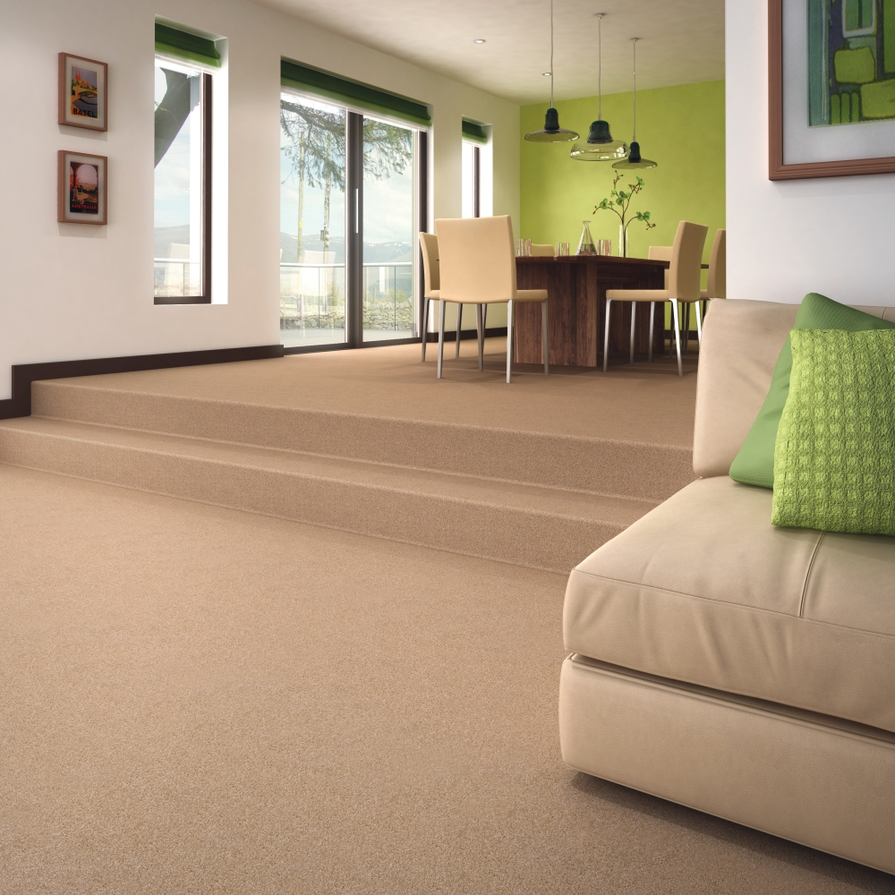 living room decoration carpet ideas 2